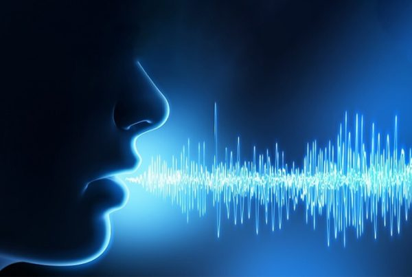 Detect impersonation with voice biometrics